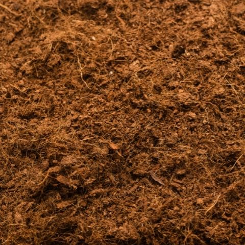 substrato en tenerife